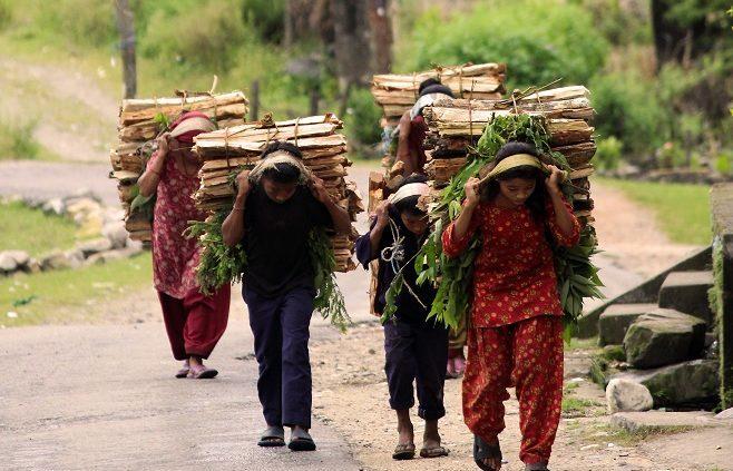 Qui és Amics del Nepal