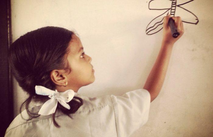 escolar amics nepal