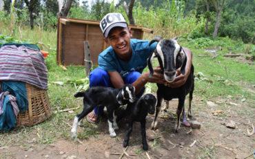 Carta d'en Kush Rawal, un futur veterinari